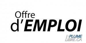Offre d'emploi : MDJ Saint-Calixte